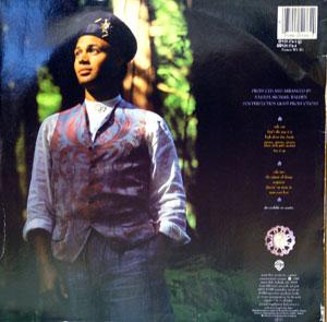 Back Cover Album Narada Michael Walden - The Nature Of Things