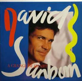 David Sanborn - A Change Of Heart