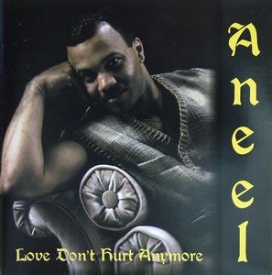 Aneel - Love Don't Hurt Anymore