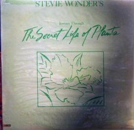 Stevie Wonder - The Secret Life Of Plants
