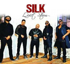 Album  Cover Silk - Quiet Storm on  Records from 2016