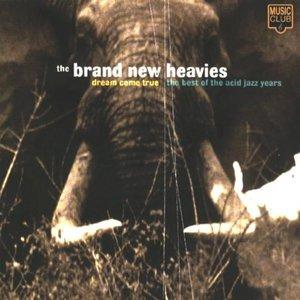 Front Cover Album The Brand New Heavies - Dream Come True The Best Of The Acid Jazz Years