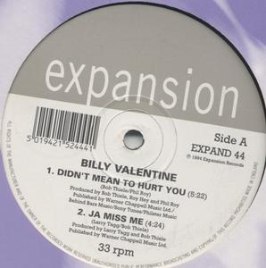 Album  Cover Billy Valentine - Didn't Mean To Hurt You Ep on EXPANSION / EXPAND 44 Records from 1994