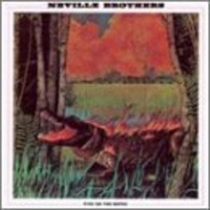 Album  Cover The Neville - Fiyo On The Bayou on A&M Records from 1981