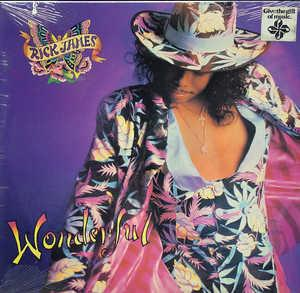 Album  Cover Rick James - Wonderful on REPRISE Records from 1988
