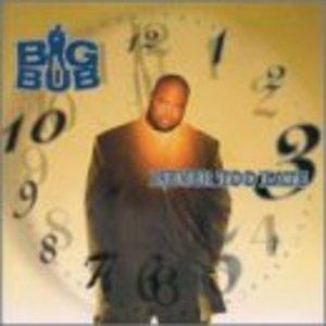 Album  Cover Big Bub - Never Too Late on FLAVOR UNIT Records from 2000