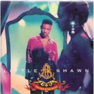 Front Cover Album Little Shawn - The Voice In The Mirror