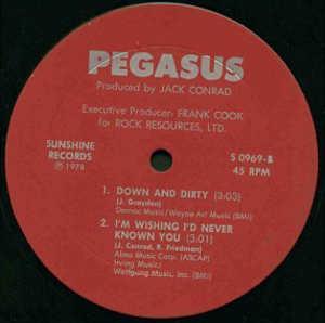 Single Cover Pegasus - Fly