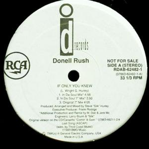 Single Cover Donell - If Only You Knew Rush
