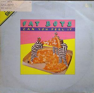 Single Cover Fat Boys - Can You Feel It