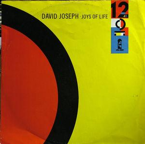 Single Cover David - Joys Of Life Joseph