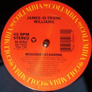 Single Cover James 'd-train' - Misunderstanding Williams