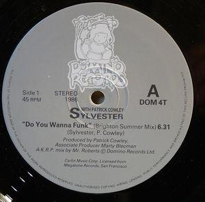 Single Cover Sylvester - Do You Wanna Funk (brighton Summer Mix)