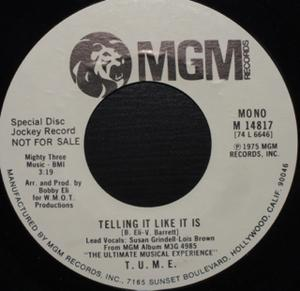 Single Cover T.u.m.e. - Telling It Like It Is