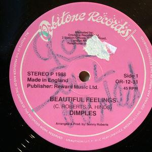 Single Cover Fields Richard - Beatiful Feelings Dimples