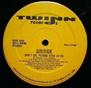 Single Cover Bridge - Don't Go Please Stay