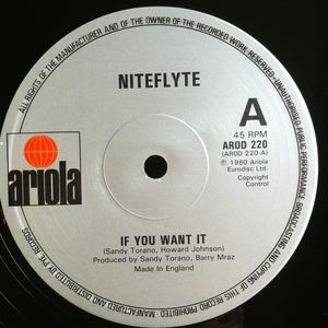 Single Cover Niteflyte - If You Want It