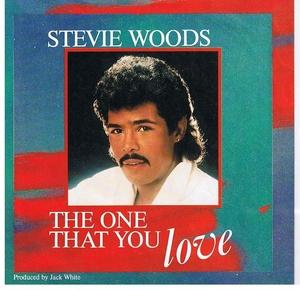 Single Cover Stevie - The One That You Love Woods