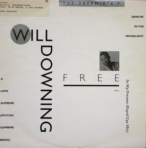 Single Cover Will - Free Downing